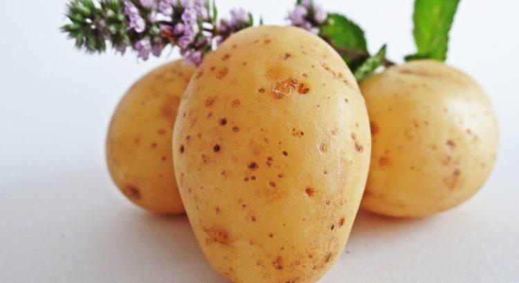 Top 10 Exporteure von Kartoffeln
