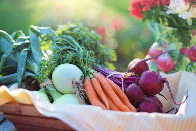 TOP 10 Export für Gemüse